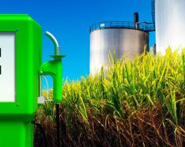 etanol-00-260x207.jpg
