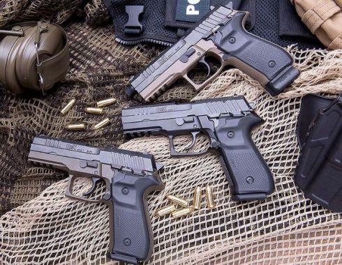 Arex-arma-02-490x380.jpg
