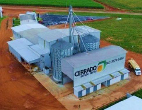 Cerrado-Nutrição-490x380.jpg